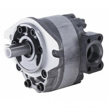 """^ 11 16 22 Gpm Two Stage Log Splitter Replacement Pump, 1"""" Pipe Inlet Port 3000 PSI 2-BOLT Gear Pump"""