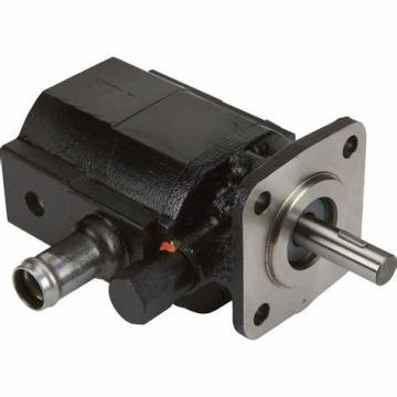 hydraulic gear pump