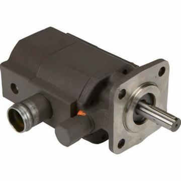Yuken Hydraulic Piston Pump PV2r1-23-F-Raa-43