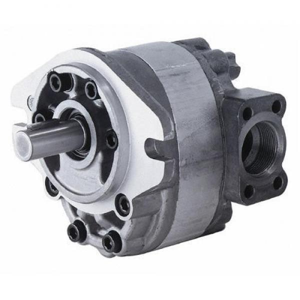 Hydraulic Parker T7DBS T6ccmw T7BBS T67CB T6cc T6CCM T67cbw T6ccw T67dB T6DC Vane Pump #1 image