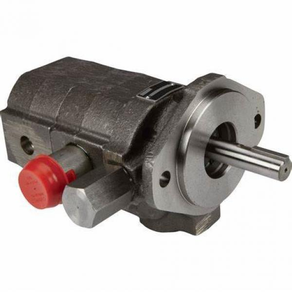 Replacing PARKER Axial Plunger Pump PV016R1K1T1NFFD Hydraulic Pump Motor PV016 Series #1 image