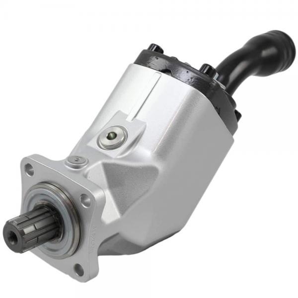 F12 Series Hydraulic Pump F12-110 Hydraulic Piston Pump #1 image