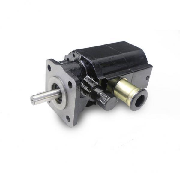Yuken PV2r Series PV2r12, PV2r13, PV2r23, PV2r14, PV2r24, PV2r34 Hydraulic Double Vane Pump PV2r23-41-76-L-Reab #1 image